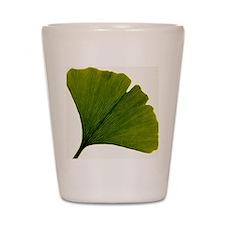 Leaf of Ginkgo biloba Shot Glass
