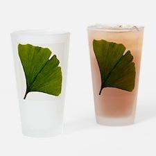 Leaf of Ginkgo biloba Drinking Glass