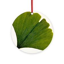 Leaf of Ginkgo biloba Round Ornament