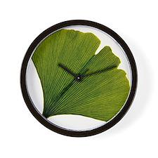 Leaf of Ginkgo biloba Wall Clock