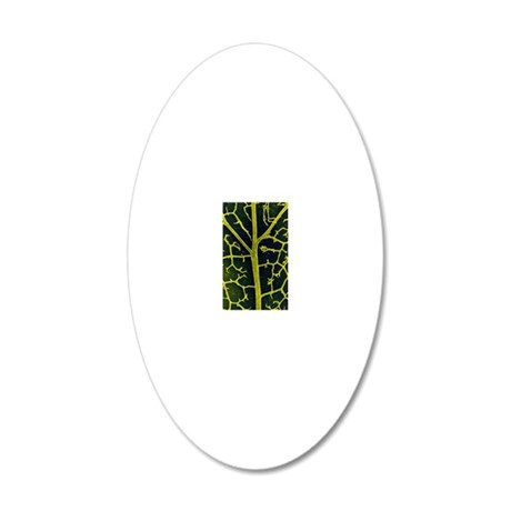 Leaf veins of the common ivy 20x12 Oval Wall Decal