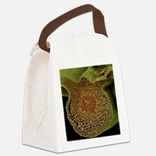 Leaf midrib, SEM Canvas Lunch Bag