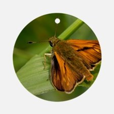 Large Skipper Butterfly Round Ornament