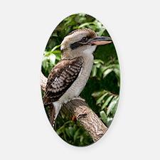 Laughing kookaburra Oval Car Magnet