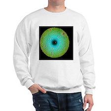 Laue diffraction of enzyme Rubisco Sweatshirt
