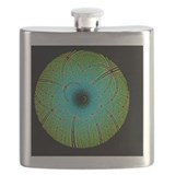 Protein crystallography Flask Bottles