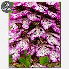 Lady Orchid (Orchis purpurea) Puzzle