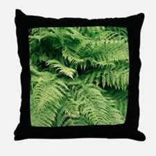Lady fern fronds (Athyrium filix-femi Throw Pillow