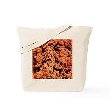 Klebsiella pneumoniae bacteria Tote Bag
