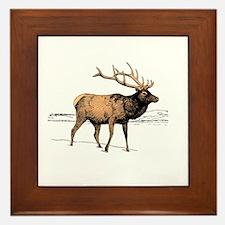 Canadian Elk Framed Tile