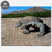 Komodo dragon Puzzle