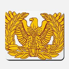 warrant officer eagle Mousepad