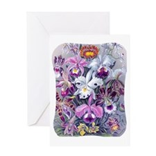 3 IPAD-SLEEVE-Hkl-BQORCHIDS Greeting Card