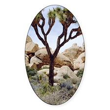 Joshua tree Decal