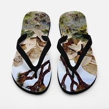Joshua tree Flip Flops