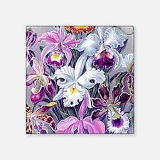 """19th C Vintage Orchid Paint Square Sticker 3"""" x 3"""""""