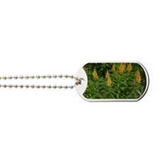 Isoplexis canariensis flowers Dog Tags
