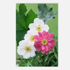 Japanese anemone flowers Postcards (Package of 8)