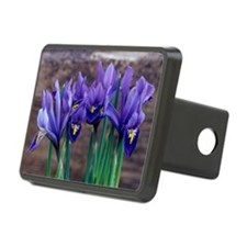 Iris 'Joyce' flowers Hitch Cover