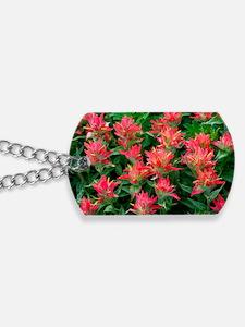 Indian paintbrush flowers Dog Tags