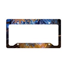 Insulated propellant tank License Plate Holder