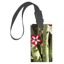 Impala lily (Adenium multiflorum Luggage Tag
