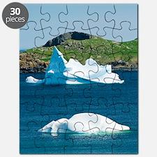 Icebergs, Canada Puzzle