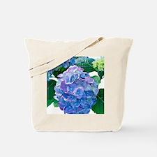 Hydrangea (Hydrangea macrophylla) Tote Bag