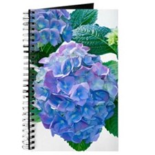 Hydrangea (Hydrangea macrophylla) Journal