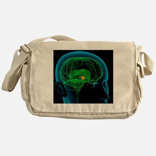 Hypothalamus in the brain, artwork Messenger Bag
