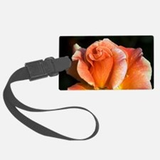 Hybrid tea rose (Rosa 'Can-Can') Luggage Tag