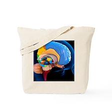 Human brain anatomy, artwork Tote Bag