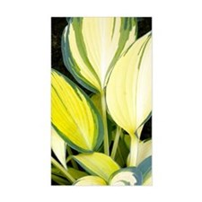 Hosta 'Remember Me' Decal