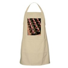 Homoeopathic remedies Apron