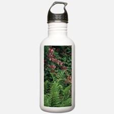 Honeysuckle and male f Water Bottle
