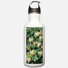 Honeysuckle (Lonicera  Water Bottle