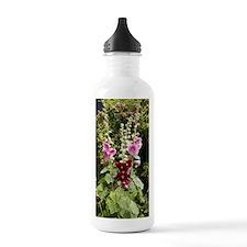 Hollyhock (Alcea rosea Water Bottle