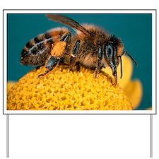 Honey bee on flower Yard Sign