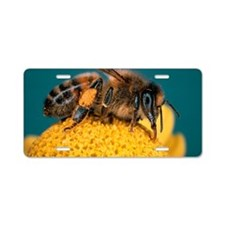Honey bee on flower Aluminum License Plate