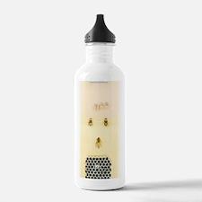 Honey bee life cycle Water Bottle