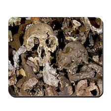 Hominid skull casts Mousepad