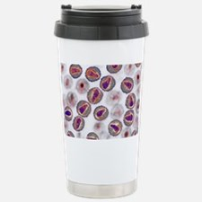 HIV particles, TEM Stainless Steel Travel Mug