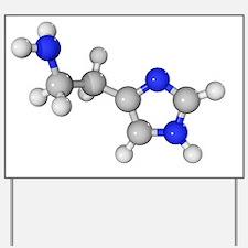 Histamine molecule Yard Sign