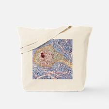 Hippocampus neuron, TEM Tote Bag