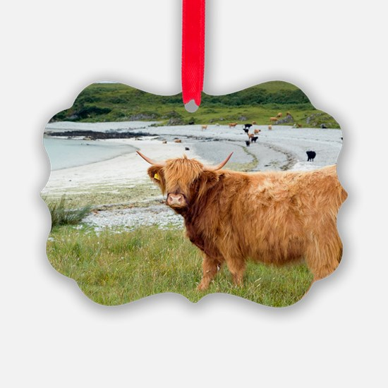 Highland cattle by the sea Ornament