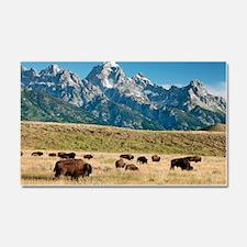 Herd of American Bison Car Magnet 20 x 12