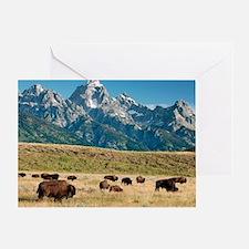 Herd of American Bison Greeting Card