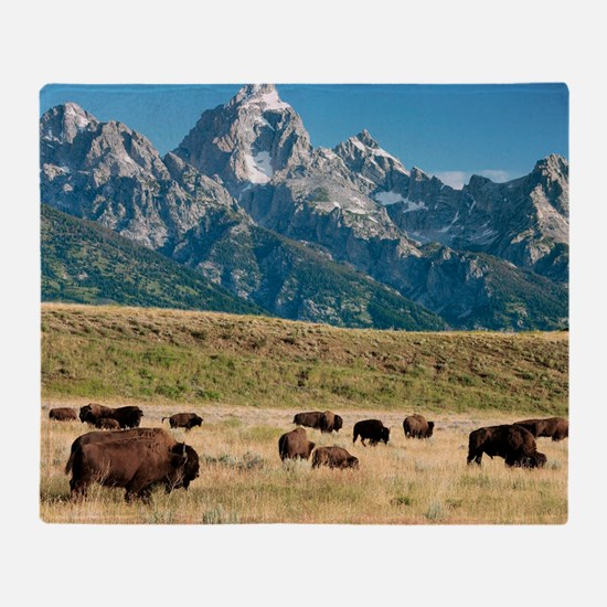 Herd of American Bison Throw Blanket