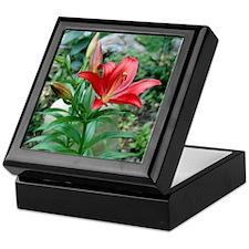 Star Lily Keepsake Box