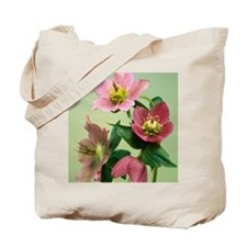 Hellebore flowers Tote Bag